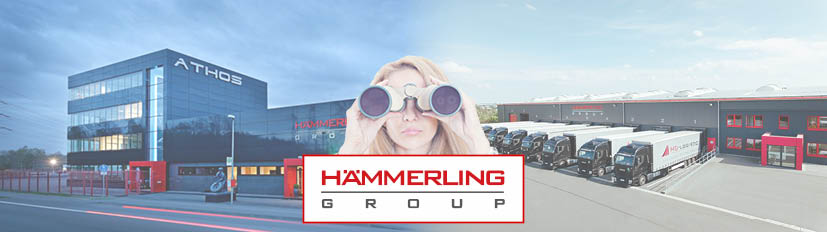 haemmerling-group career