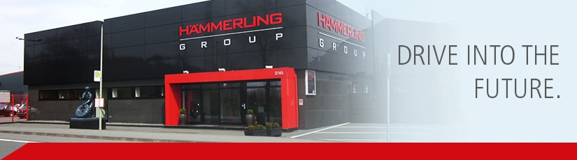 haemmerling-group drive into the future